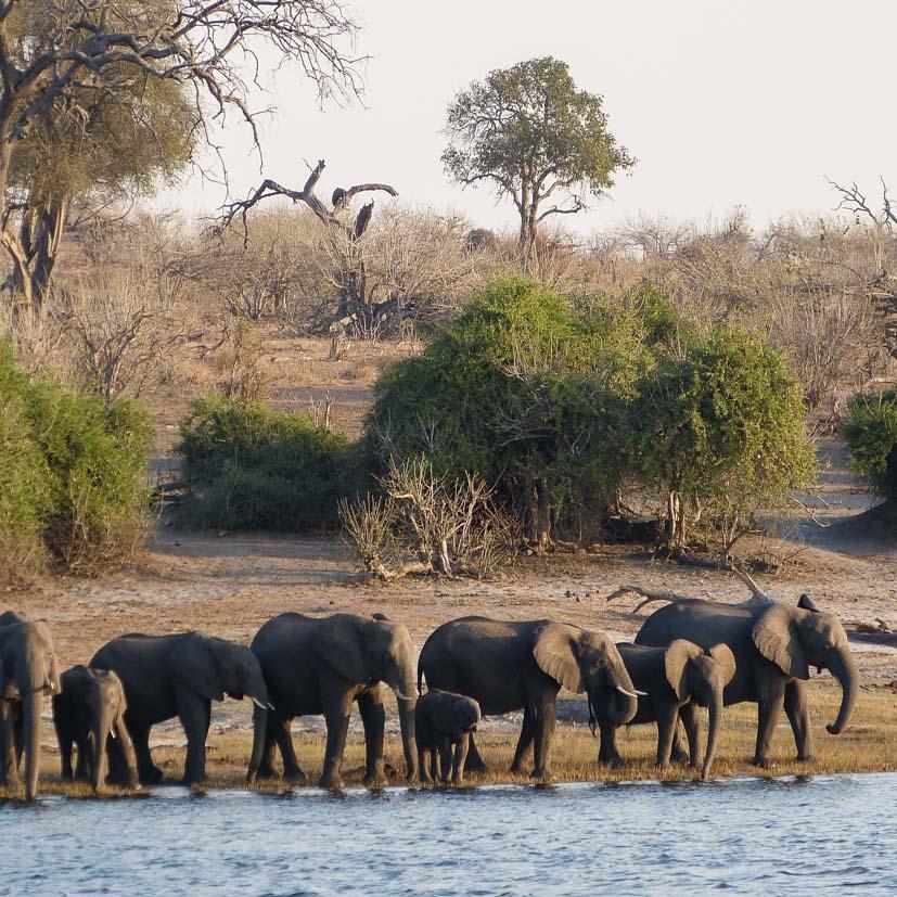 K12_005_Botswana