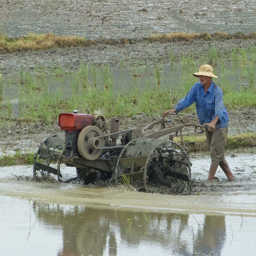K12_027_Kroning_Vietnam