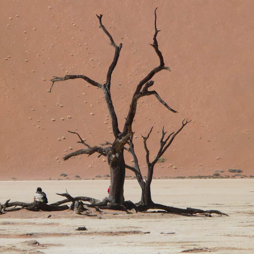 K12_038_Namibia